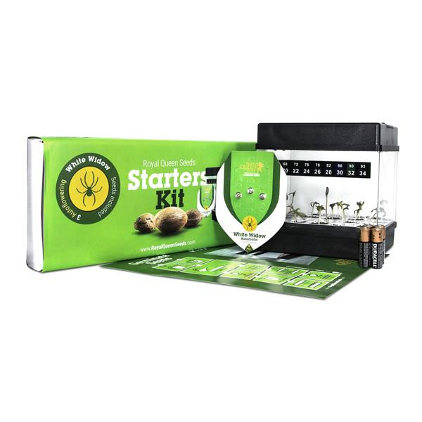 Starters Kit Autoflorescents