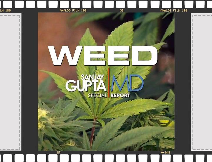 Cannabis documentary