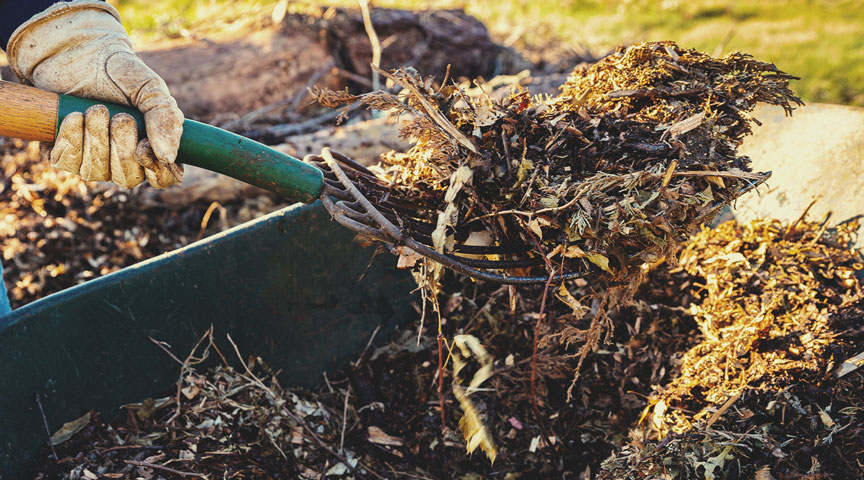 Applied directly as a soil amendment