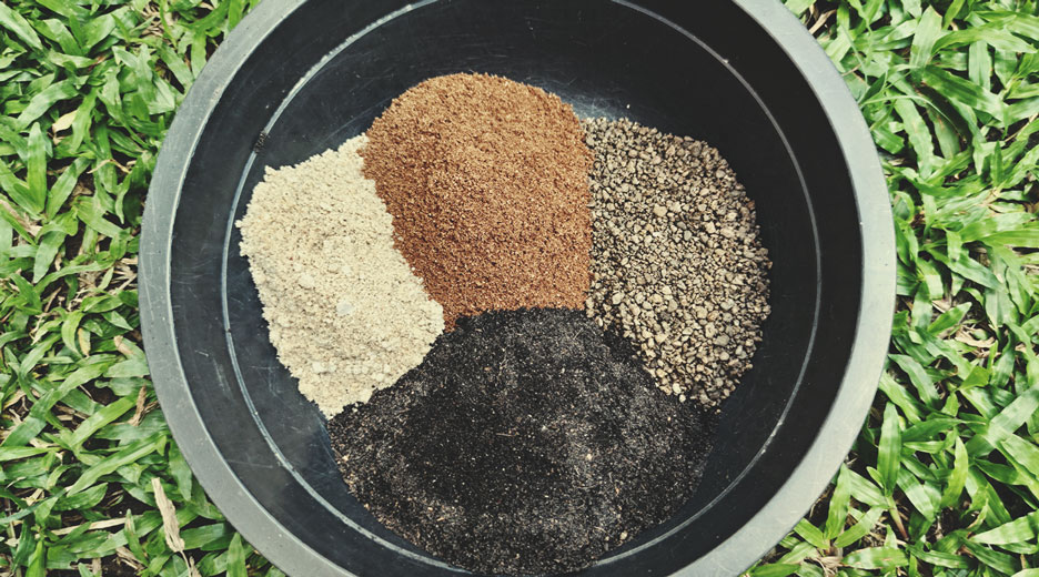 As an organic soil mix with bone meal and chicken manure