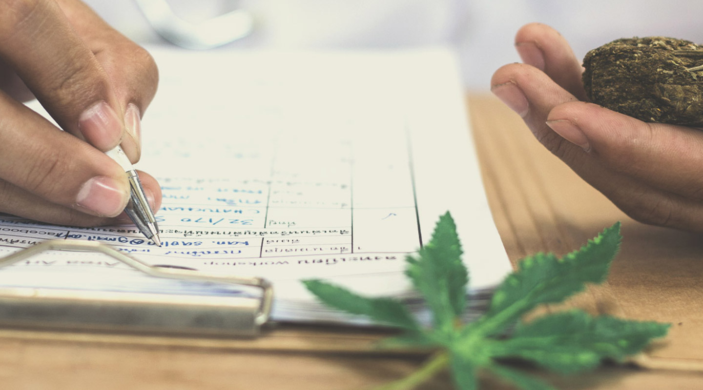 What Is Considered High-THC Cannabis?