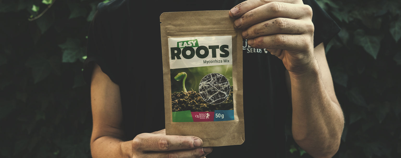 A Few Tips for Your Medical Cannabis Garden or Grow Room