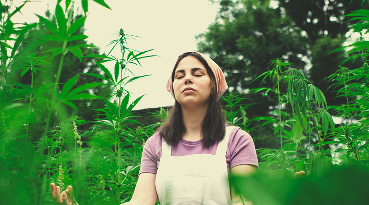 Can you share a practice with us that we could use to meditate with cannabis?