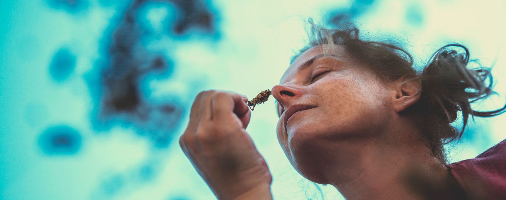 Can cannabis help people deal with anxiety, stress, weight loss, laying off alcohol…?