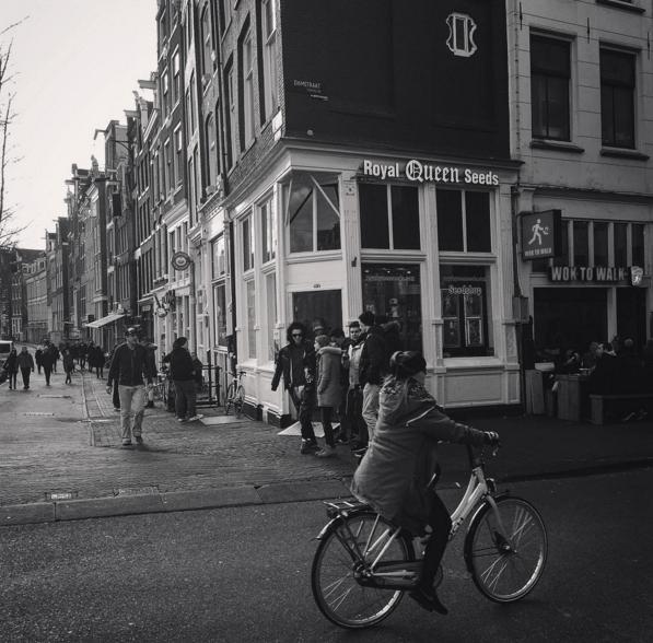 Botiga de llavors de cànnabis a Amsterdam