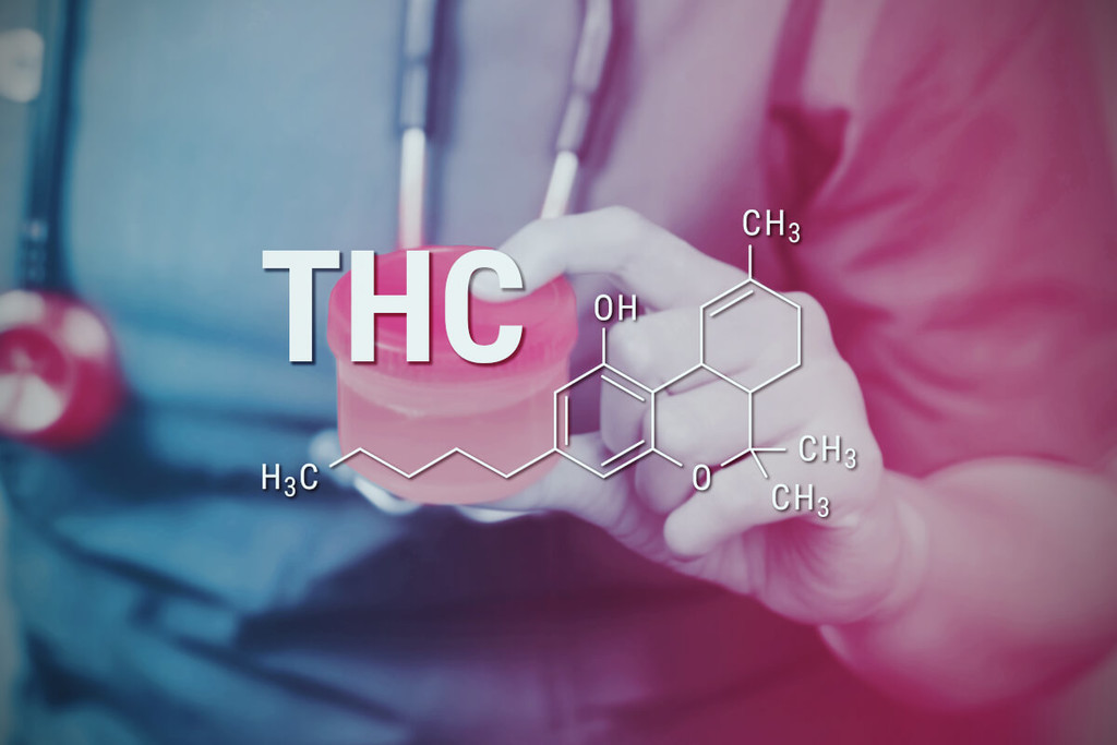 How To Flush THC Out Of Your System | Royal Queen Seeds - RQS Blog