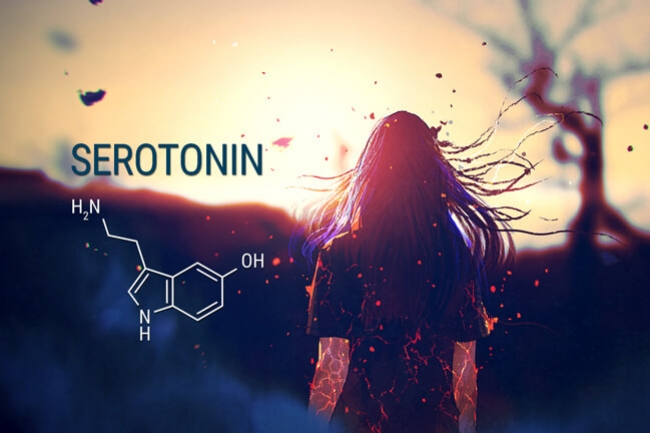 Cannabis And Serotonin: Can This Relationship Treat Anxiety